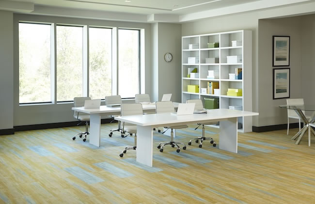 Product Spotlight: Milliken's Color Field Collection