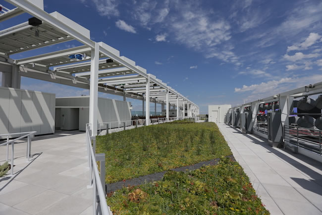 The 25,000-square-foot American Hydrotech Garden Roof Assembly is a lightweight green technology that supports a living garden of drought-tolerant indigenous plants.